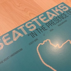 Beatsteaks - in the presence of