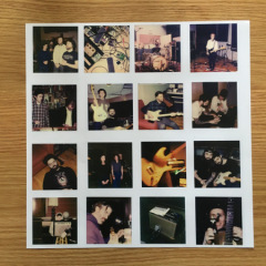 Fiddlehead-5