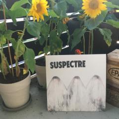 Suspectre-1