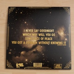 The Baboon Show – I never say Goodnight