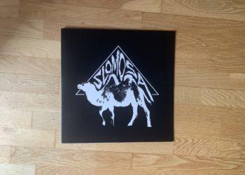 Slomosa - Slomosa Vinyl LP 5