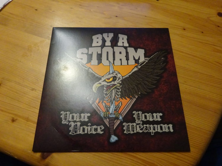 By a Storm - Your Voice Your Weapon 1