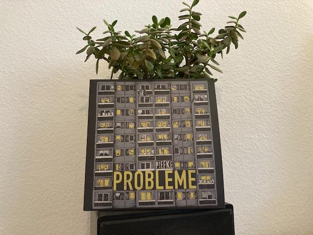 PIEFKE - Probleme 1