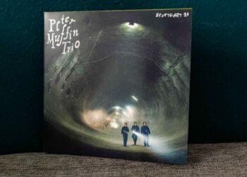Peter Muffin Trio - Stuttgart 21 3